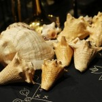 Concert Conch Shells, Katharí Debut concert at Flushing Town Hall, Flushing Queens, New York, December 10, 2010, photo by Norm Harris.