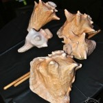Concert Conch Shells 2, Langston Hughes Community Library and Cultural Center in Corona Queens, November 2, 1013, photo by Norm Harris.