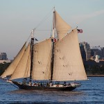 Sail boat in New York Harbor, June 2014, photo credit: Euripides Kastaris.